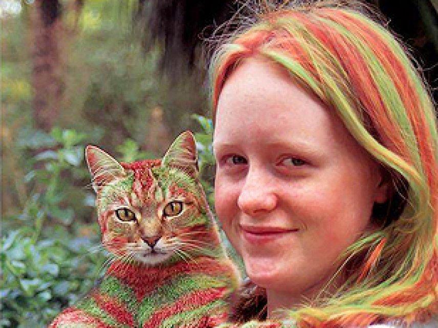 Мода за 15 тысяч долларов: кошки–раскраски | Котики ...